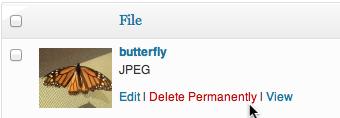 file-delete