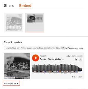 Soundcloud more options