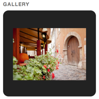 Gallery with Slideshow Style
