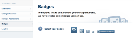 instagram_badge_options