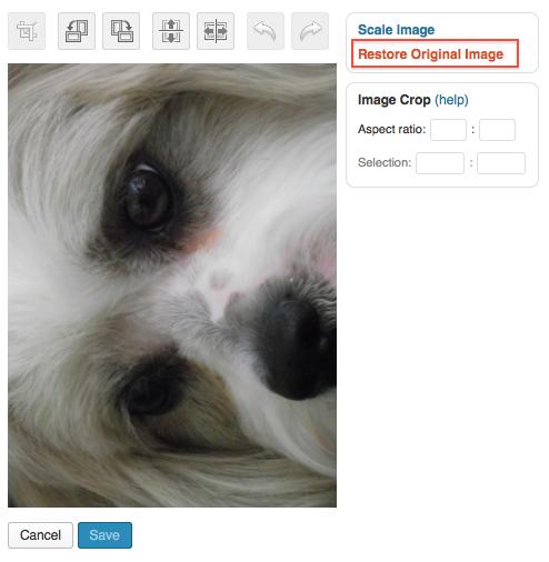 Image Editing — Support — WordPress.com