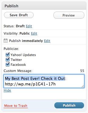 editing the Publicize - Publish Box